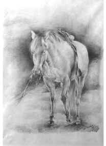 El caballo de Calígula.