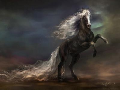 Un caballo negro.